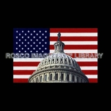 Rosco iPro Slide US Flag / Capitol P1853