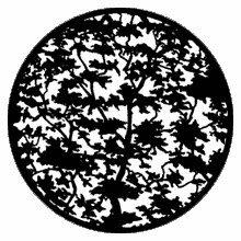 Rosco Tree 7 79118 Standard Steel Gobo
