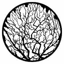 Rosco Winter Tree 2 Standard Steel Gobo 79119