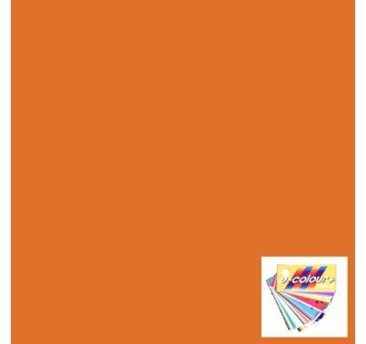 "Rosco 147 Apricot Lighting Gel Sheet 21""x24"""