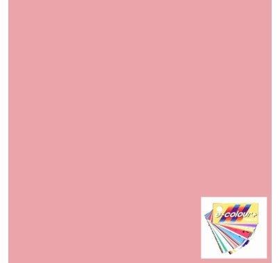 "Rosco 153 Pale Salmon Lighting Gel Sheet 21""x24"""