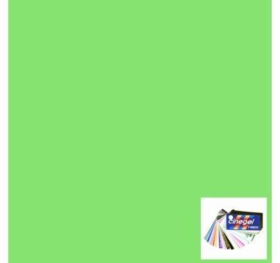 Rosco Cinegel 3304 Tough Plus Green Window Green Gel Filter Sheet