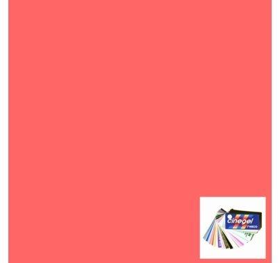 Rosco Cinegel 3310 Fluorofilter Gel Filter Sheet