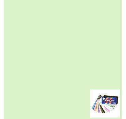 "Rosco Cinegel 3317 1/8 PlusGreen Gel Filter Roll 48""x25ft."
