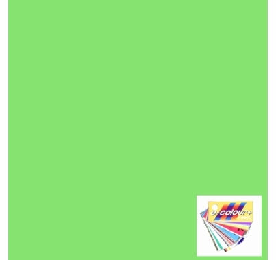 Rosco E Color 244 Full Plus Green Gel Filter Sheet