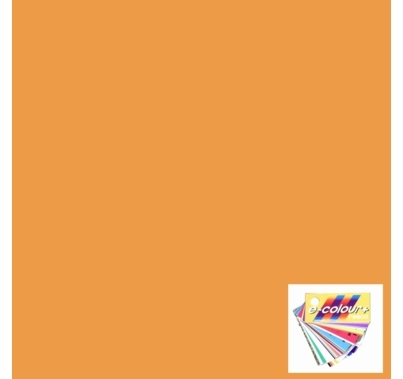 Rosco E Colour 009 Pale Amber Gold Lighting Gel Filter Sheet