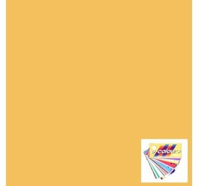 Rosco E Colour 013 Straw Tint Lighting Gel Filter Sheet