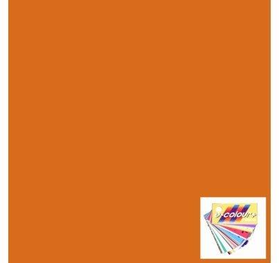 Rosco E Colour 021 Gold Amber Lighting Gel Sheet 21 x 24 Inch