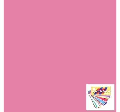 Rosco E Colour 036 Medium Pink Lighting Gel Sheet 21 x 24 Inch