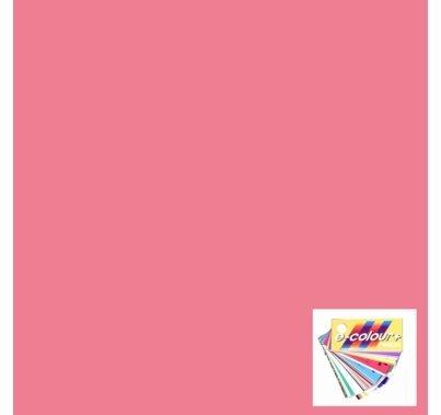 Rosco E Colour 039 Pink Carnation Lighting Gel Filter Sheet