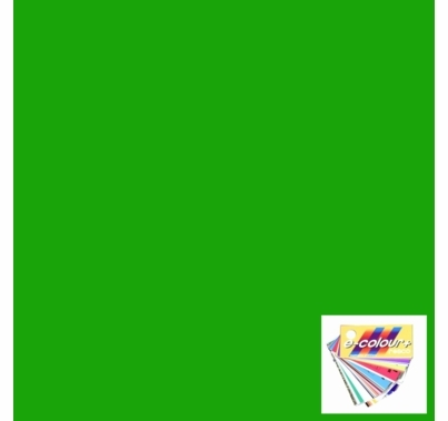 Rosco E Colour 089 Moss Green Gel Filter Sheet