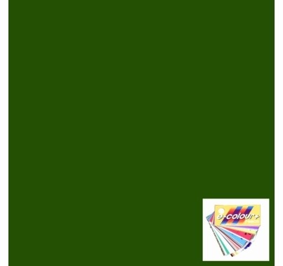 "Rosco E Colour 090 Dark Yellow Green Lighting Gel Sheet 21""x24"""