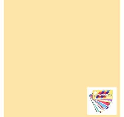 Rosco E Colour 103 Straw Gel Filter Sheet