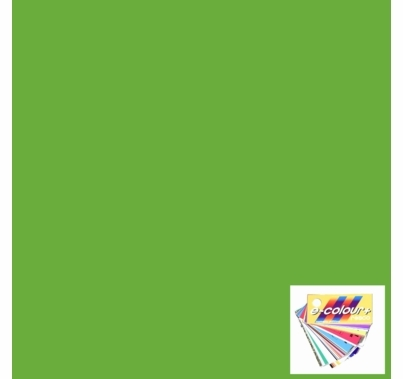 "Rosco E Colour 121 Leaf Green Lighting Gel Sheet 21""x24"""