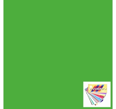 "Rosco E Colour 122 Fern Green Lighting Gel Sheet 21""x24"""