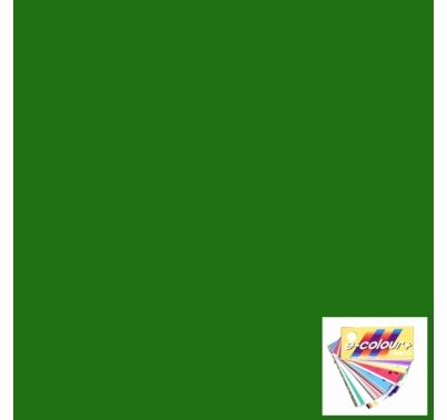 "Rosco E Colour 124 Dark Green Lighting Gel Sheet 21""x24"""