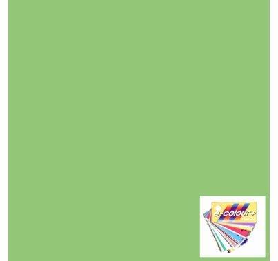 """Rosco E Colour 138 Pale Green Lighting Gel Sheet 21""""x24"""""""