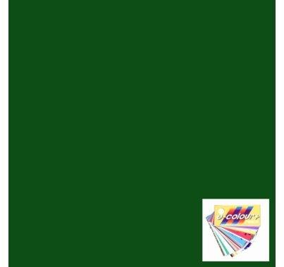 Rosco E Colour 139 Primary Green Lighting Gel Filter Sheet 21x24 in