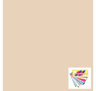 Rosco E Colour 223 Eighth CTO Lighting Filter Gel Sheet 10 x 12 Inch