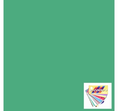"Rosco E Colour 242 Fluorescent 4300K Gel Filter Sheet 21""x24"""