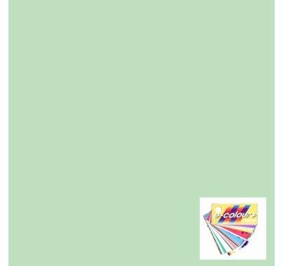 Rosco E Colour 246 Quarter Plus Green Gel Roll