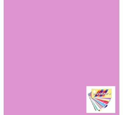 Rosco E Colour 248 Half Minus Green Magenta Gel Sheet 10 x 12 Inch