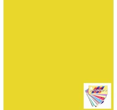 Rosco E Colour 5336 Aztec Gold Gel Filter Sheet