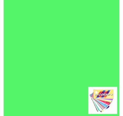 "Rosco E Colour 5455 Tarragon Green Lighting Gel Filter Sheet 21""x24"""