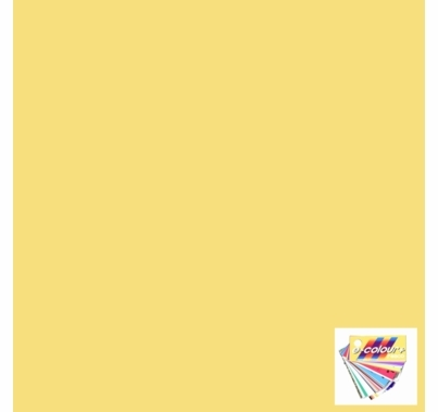"Rosco E Colour 764 Sun Colored Straw Lighting Gel Sheet 21""x24"""
