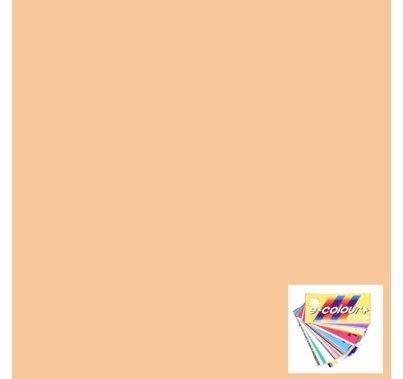 Rosco E Colour Pale Gold 152 Gel Filter Sheet
