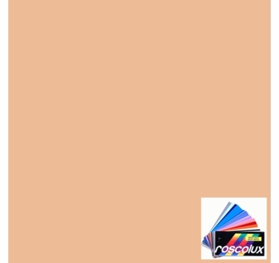 Rosco Roscolux 304 Pale Apricot Gel Filter Sheet