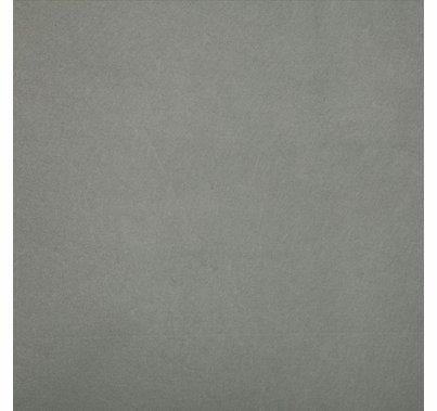 Studio Assets 8'x10' Light Gray Muslin Fabric for PXB