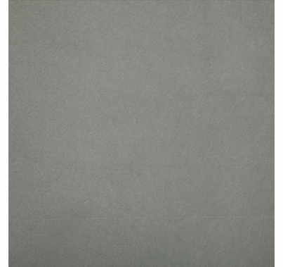 Studio Assets 8'x8' PXB Muslin Light Gray Fabric