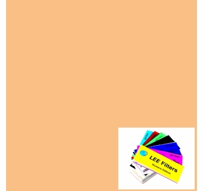 "Lee 441 Full CTS Straw Lighting Gel Filter Sheet 21""x24"""