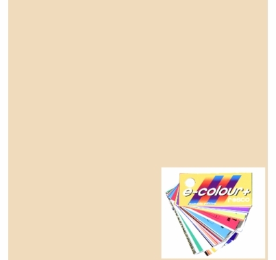 Rosco E Color Quarter Straw 1/4   443 CTS  Gel Sheet