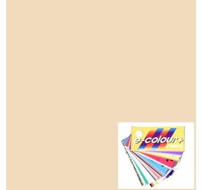 Rosco E-Colour 1/4 Straw 443 Quarter CTS Gel Roll