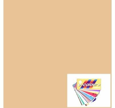 Rosco E Colour 206 Quarter CTO Orange 4'x4' Gel Sheet