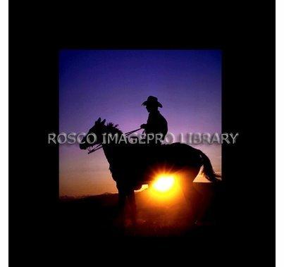 Rosco iPro Slide Cowboy P8855