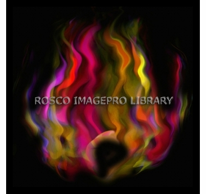 Rosco iPro Slide Fire P2356