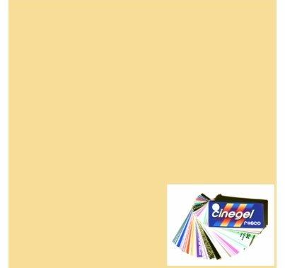 Rosco Roscosun 1/4 CTO 3409 Gel Sheet Quarter CTO