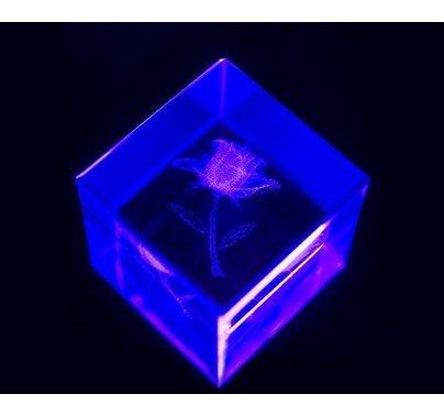 Chauvet LED Shadow DMX Blacklight  TFX-UVLED