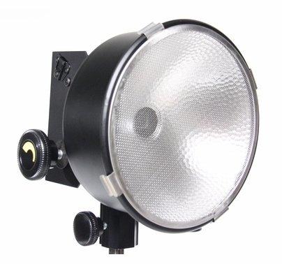 Lowel DP Light  D2-10