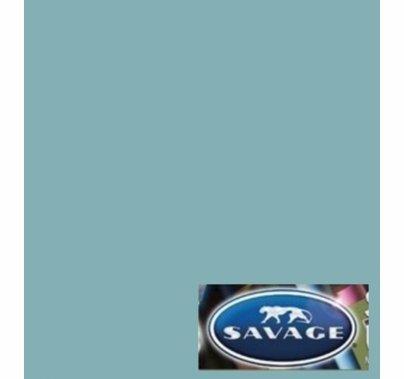 """02 Sky Blue Savage Seamless Paper 107""""x12yds"""