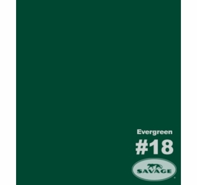 "18 Evergreen Savage Seamless Paper 107""x12yds 18-12"