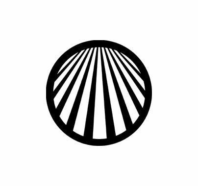 Rosco Perspective Lines 2 78047 Standard Steel Gobo