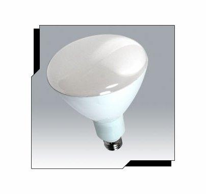 Ushio Uphoria 11W LED R30 Reflector Bulb 120V Warm White