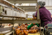 Food Industry Hearing Protection