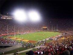 Ear Plugs for Stadium Sports
