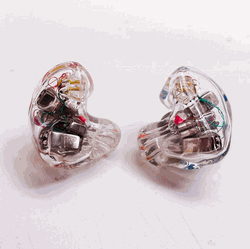 InEarZ Custom Musician Earphones